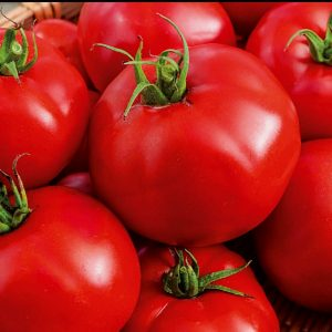 Valgomieji pomidorai