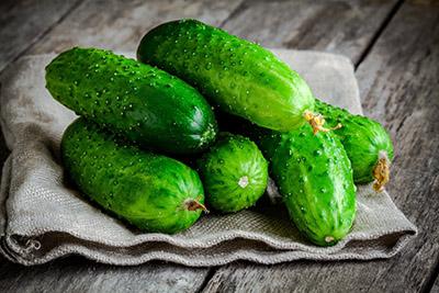 sėklos agurkų