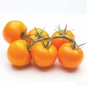 pomidoru